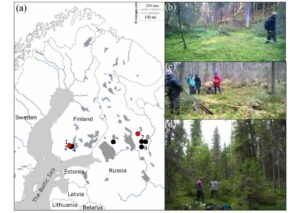 Integrating fire-scar, charcoal and fungal spore data to study fire events in the boreal forest of northern Europe