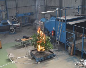 WUI flammability experiments at whole-plant scale
